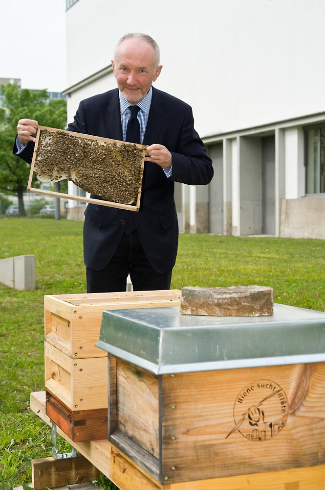 Heinrichsgarten - Museumsdirektor Vogel mit den Bienen am Hygiene-Museum