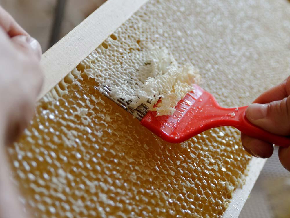 Honigverarbeitung